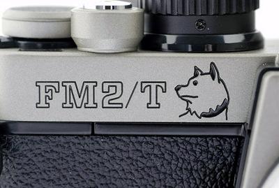 Fm2tdog3_2
