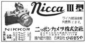 19513niccaiiis
